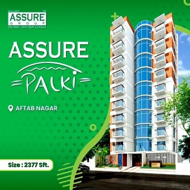 overview of Assure Palki